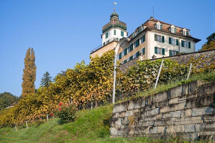 Schloss Grünenstein Branchenverband St. Galler Wein