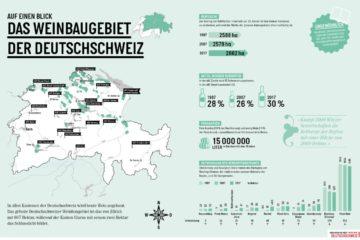 Weinbaugebiet Deutschschweiz